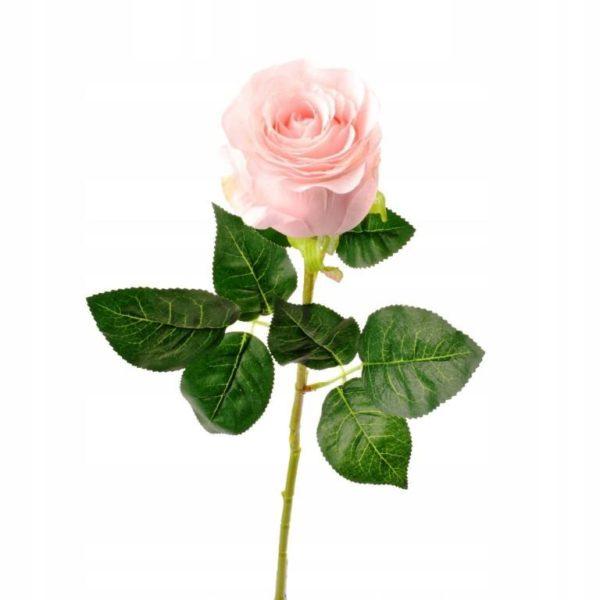 Одиночные цветы, ветки