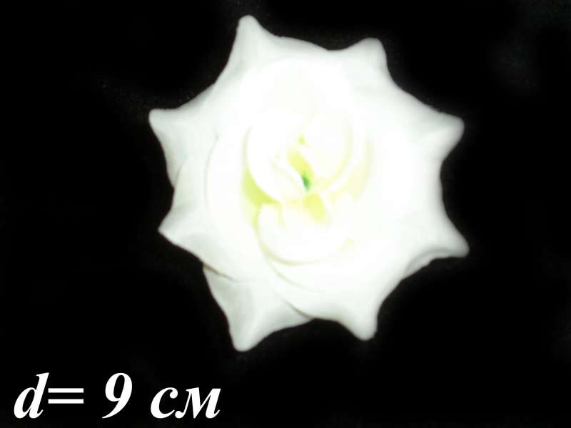 "Роза ""Малютка"" (уп. 30 шт.)"
