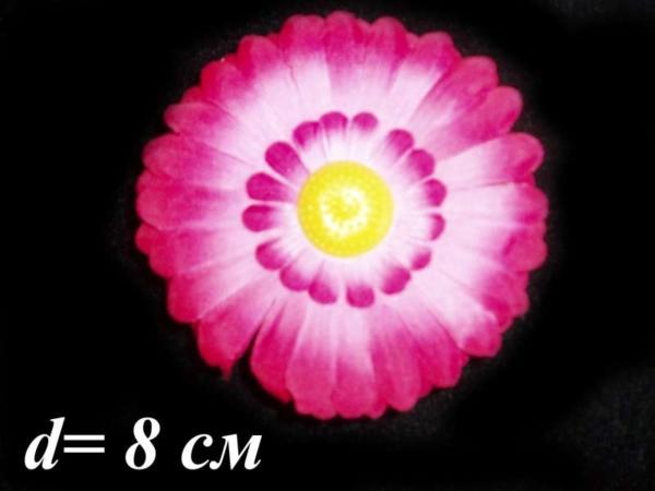 Ромашка полевая (уп. 50 шт.)