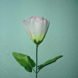 Тюльпан Средний (уп. 20 шт.)