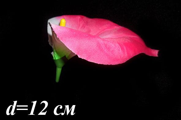 Калла шелковая (уп. 100 шт.)