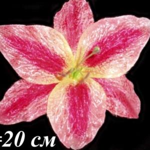 Лилия флокированная (уп. 10 шт.)